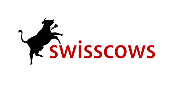 Swisscows- search engine in canada